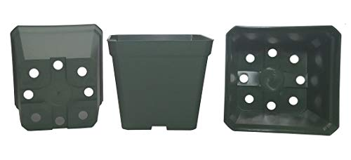 DILLEN 50-Pack, Square Nursery Pot Plastic Pots for Plants, 4 Inch. Color: - Pot Square Nursery