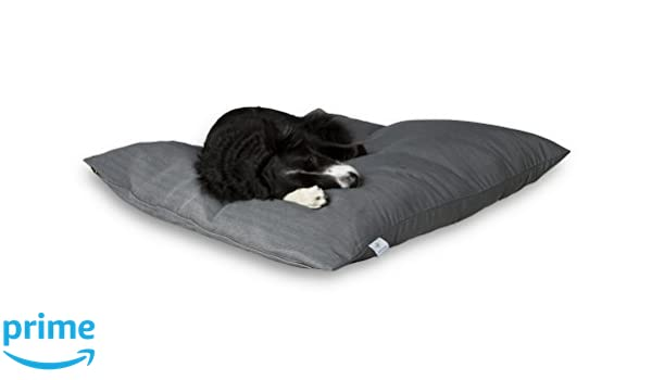 Darling Little Place Cama para Perros, 110 x 110 cm, Lava Solid: Amazon.es: Productos para mascotas