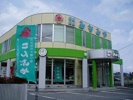 Seikan Tororo kelp 40g [Minamisan kelp use Aomori Prefecture Shimokita assets and Hokkaido road]
