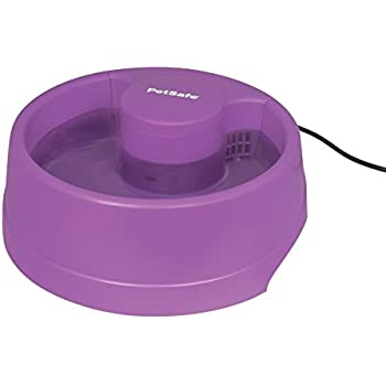PetSafe Current Circulating Dog and Cat Water Fountain, Small, Purple, 40 oz.