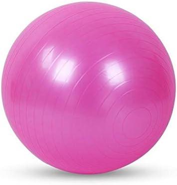 Ssery Bola de Ejercicio de 65 cm, Asiento de Pelota de Yoga ...