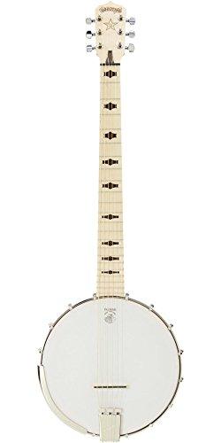 Best Beginner Banjo in 2019