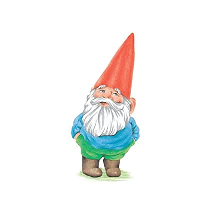 3dRose lsp_123988_2 Gnome. Garden Gnome Cartoon. Elf. Double