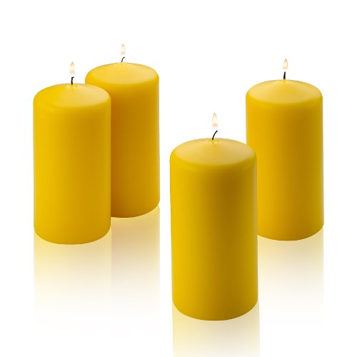 Light In the Dark 4 Citronella Scented Pillar Candle 6 Inch