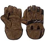 Arfa Aaina Sports - Junior Leather Wicket Keeping Gloves - 8 12 Years, Youth (Multi Colour)