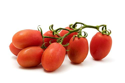 0.3g (Approx. 105) Tomato Seeds Roma vf Classic Italian Paste Tomato for Canning