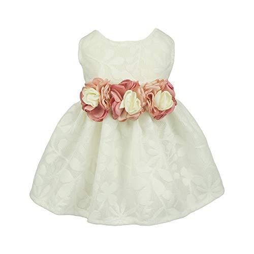 Fitwarm Elegant Rose Lace Pet Dog Weddding Dresses Bride Clothes Formal Apparel
