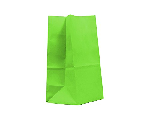 GIFT EXPRESSIONS 20CT Paper Bag, Favor Sack,Biodegradable, Food Safe Ink & Paper, Premium Quality Paper (Thicker), Favor Sack, Kraft Paper Sack (Small, Lime Green) -