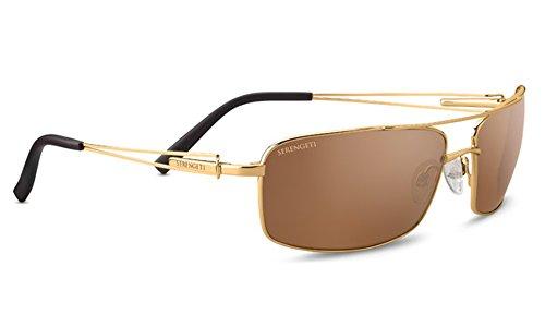 Serengeti Dante Sunglasses Shiny Bold Gold, Gold by Serengeti
