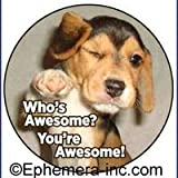 Who's awesome? You're awesome! (Pin back button)