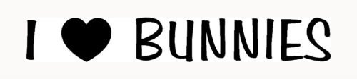 I LOVE BUNNIES Sticker Car Window Vinyl Decal Laptop Animal Heart Cute Rabbit - Die cut vinyl decal for windows, cars, trucks, tool boxes, laptops, MacBook - virtually any hard, smooth surface