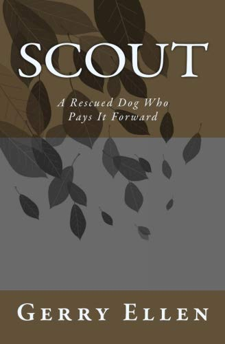 Scout: A Rescued Dog Who Pays It Forward (Becoming A Dog Trainer For Service Dogs)