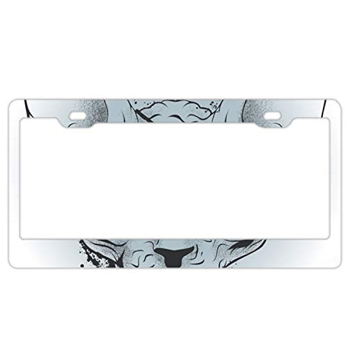 High Pirates Polish (Drawing Bald Cat Pirate Stainless Steel Polish Mirror License Plate Frame£¬Size 6-5/16