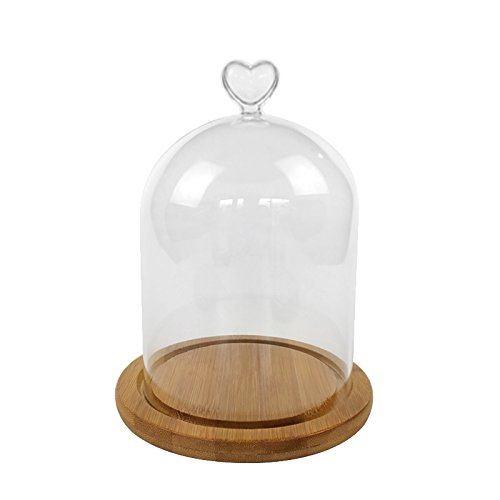 ReFaXi Clear Glass Bell Jar Dome Flower Display Jar Vase Heart-Shaped with Wooden Base for Decoration Gifts