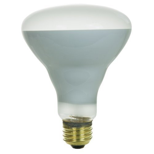 Sunlite 65BR30/FL/PL Incandescent 65-Watt, Medium Based, BR30 Reflector Colored Bulb, Plant by Sunlite