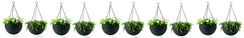 Keter Dia 13.9 in. Round Plastic Resin Garden Plant Hanging Planters Decor Pots 2 pc, Brown (5-Pack) by Keter