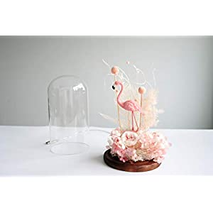 Snowkingdom Beauty and The Beast Inspired Red Rose Flower LED Light with Fallen Petals in a Glass Dome on a Wooden Base 2