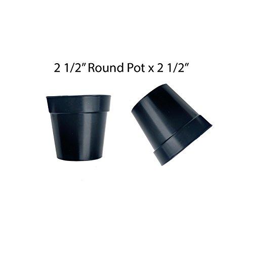 2 inch plastic flower pots - 2