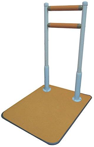 サテライト ふくよく床置式手すり 水回りにもってこい 60-I FKB-12-60-I B075T3KBP6
