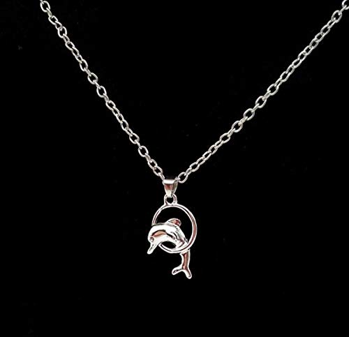 Dolphin Jumping Through Hoop - Onlyfo Simple Style Dolphin Jumping Through Hoop Pendant Necklace with Jewelry Box,Dolphin Necklace for Women (Silver)