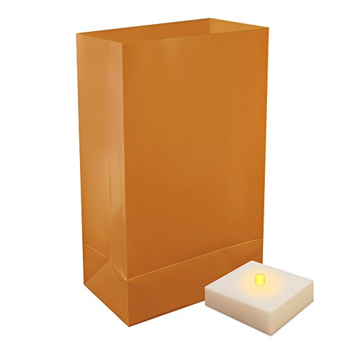 LumaBase 77406 6 Count Battery Operated Luminaria Kit with Timer, Tan Luminaria Kit