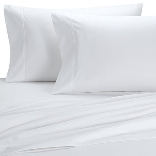 Buy is egyptian cotton the best