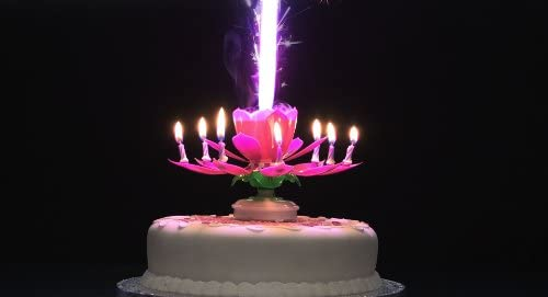 Rotating Musical Flower Birthday Candle