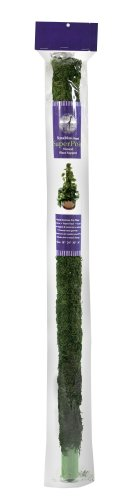 (SuperMoss (22235) Moss Pole / Plant Stake, Fresh Green, 3ft.)