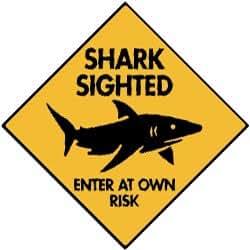Amazon Com Warning Shark Sighted Aluminum Sign 6 X 6