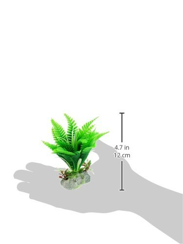 Amazon.com : eDealMax Jardin acuario Paisajismo acuático Bajo el agua decoración de la hierba Flora, Verde : Pet Supplies