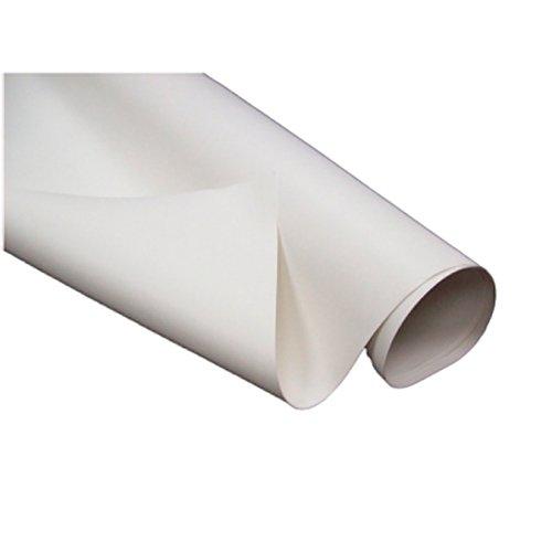 LaSalle Bristol 1700534142711440 9.5 x 40 PVC Roofing