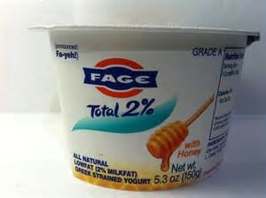 fage-yogurt-greek-total-2-with-honey-53-oz-pack-of-6