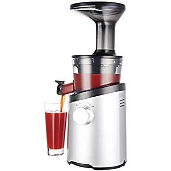 Hurom H101 Easy Clean Slow Juicer, Matte Silver