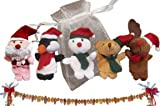 Christmas Children's Finger Puppet Stocking Stuffer: Santa, Penguin, Frosty, Bear, Reindeer w Gift Pouch