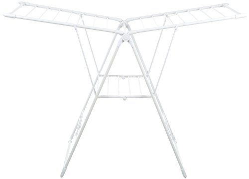 31DsbmlbXQL - AmazonBasics Gullwing Clothes Drying Rack - White