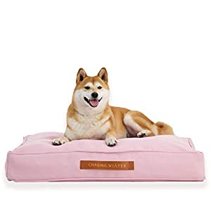 Chasing Winter Memory Foam Medium Dog Bed, 31″ x 24″ x 5″ Pink | Pain Relief Orthopedic Inner Mattress Platform Pet Bed w/ Heavy-Duty, Machine Washable Removable Cover – Breeds up to 55 Lbs.