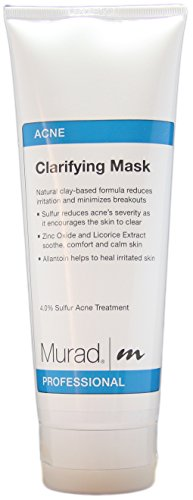 Murad Clarifying Mask Salon Ounces