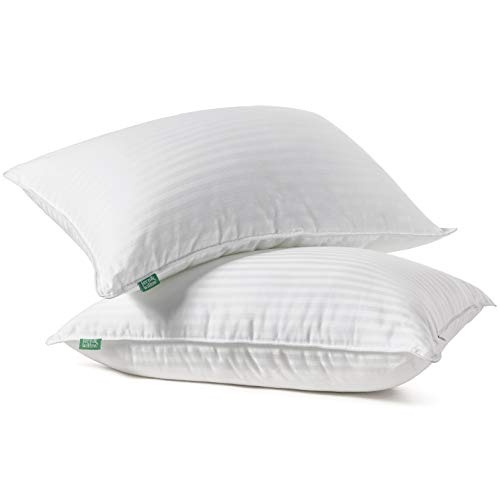 Fern and Willow Premium Loft Down Alternative Pillows for Sleeping