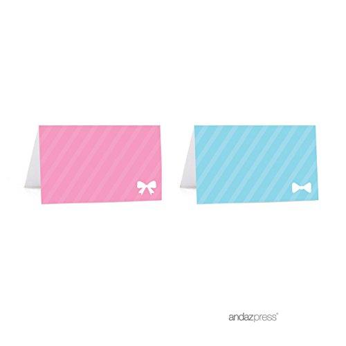 Andaz Press Team Pink Team Blue Gender Reveal Baby Shower Pa