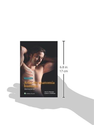 Rohen. Atlas de anatomía humana: Memorama: Joel A. Vilensky PhD ...