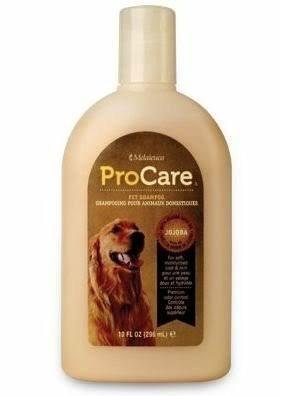Melaleuca Procare Pet Shampoo