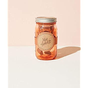 Amazon.com : Modern Sprout Garden Jar - Grow Mint with ...