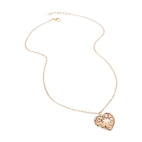 Haluoo_Jewelry Fashion Locket Necklace,Haluoo Vintage Hollow Heart Locket Necklace for Girls Personalized Locket Necklace That Holds Picture Long Stainless Steel Pendant Sweater Chain Necklace (Gold)