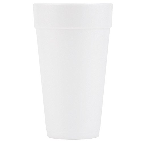 DART Insulated Foam Drinking Cups, White, 20 Oz, White, Pack of 500 Cups ()