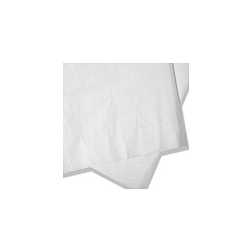 Toddy TCMPF50S Commercial Cold Brew Paper Filter - 50 / CS