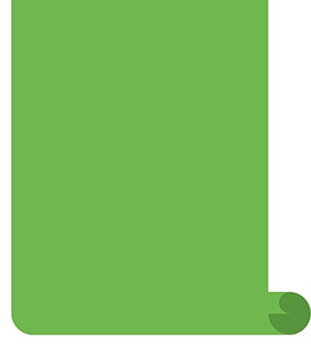 Siser EasyWeed Heat Transfer Vinyl HTV for T-Shirts 12 Inches by 3 Feet Roll (Apple Green) -