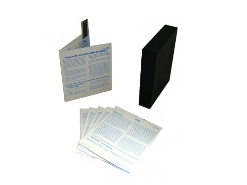 American Educational Products Microslide Cells of Plants ...