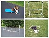Agility Gear Starter Package with Tippy Board & Fixed Weave Poles