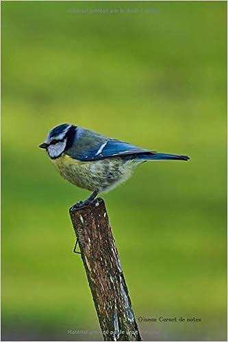 Oiseau Carnet notes: