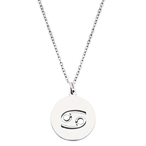 KUIYAI Zodiac Signs Cut Out Stainless Steel Disc Necklace ()